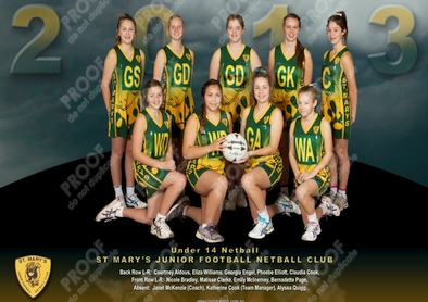 Saint Marys Team Photo 2013 U14 Netball sm